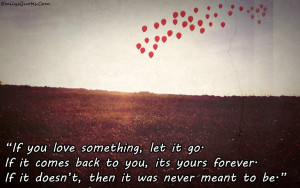 25 Sad Quotes About Letting Go