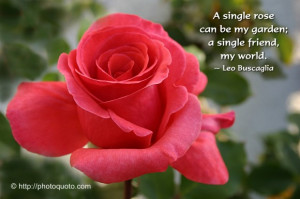 jul 10 sayings quotes leo buscaglia hannah mayes on july 10th 2011