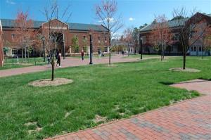 University of North Carolina at Chapel Hill Campus