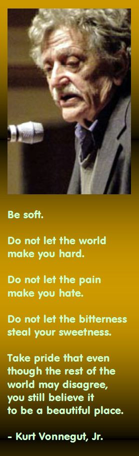 be soft do not let the world make you hard
