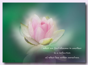 ... find irksome in another is a reflection of what lies within ourselves