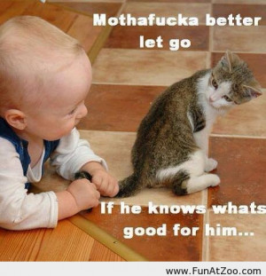Funny baby and a cat