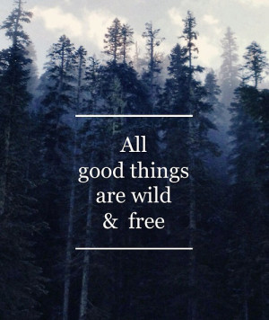 Inspirational Wild Animal Quotes Inspirational picture quotes