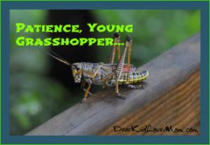Ah, Young Grasshopper ... | Dear Kid, Love Mom