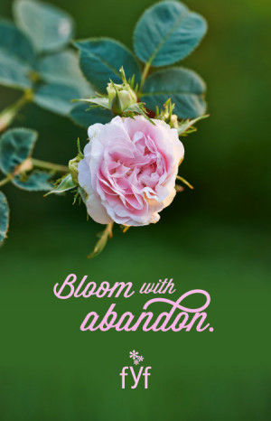 Flower inspirational quote: Bloom with abandon. By From You Flowers.