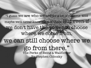 The Perks of Being a Wallflower Perks Quote