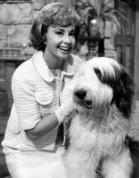 Brief about Audrey Meadows: By info that we know Audrey Meadows was ...