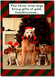 funny dogs christmas card the three wise dogs front of card shows a ...
