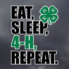 the newest 4 h window decal more 4h windows 4her 4 h windows fun ...