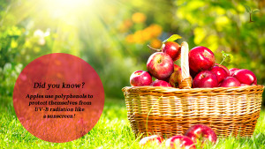 One Day One Apple For Good Health Health Quote