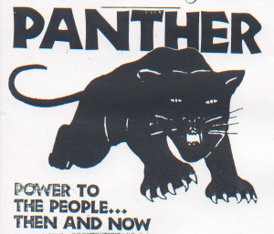 Hip-Hop N' Politics: Black Panther Party: Commemorating Power To The ...