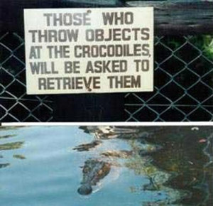 funny crocodile sign - those who throw objects at the crocodiles will ...