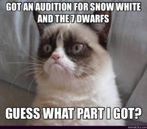 Grumpy Cat Snow White And...