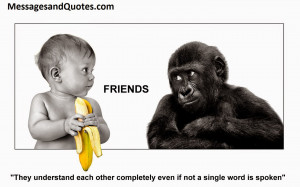 famous quotes on friendship Funny Sayings And Quotes About Idiots