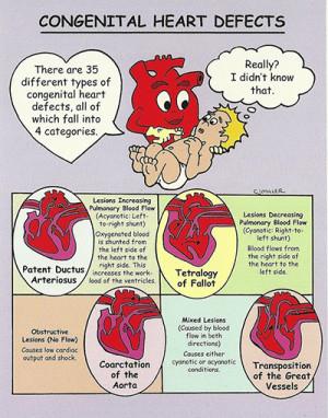 congenital heart disease awareness congenital heart disease awareness ...