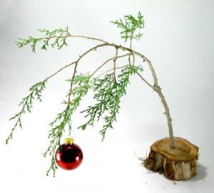 Go Back > Gallery For > Sad Christmas Tree