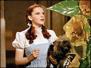 ... Toto follow the Yellow Brick Road in 1939's classic The Wizard of Oz
