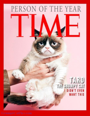 TIME---Person-Of-The-Year-----TARD-The-Grumpy-Cat-----Quote--I-Didn--t ...