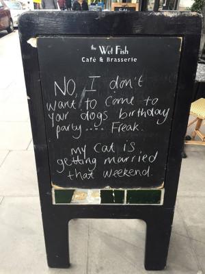 funny-bar-chalkboard-cat-wedding