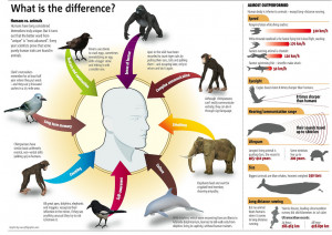 humans vs animals by jasmin source mar 9th 2012 jasmin 449