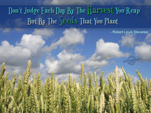 Don't judge each day by the harvest you reap but by the seeds...