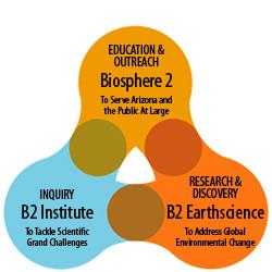 appex corporation organizational behavior design essay