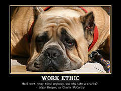 Our tired dog from Lannion is the face for this quote, and I believe ...
