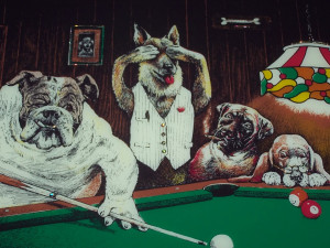 Dogs Playing Pool Picture