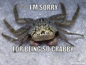 sorry, for being so crabby