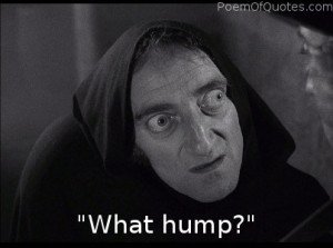 Funny Quotes From Young Frankenstein