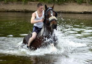 Police say pikey horse fair a success