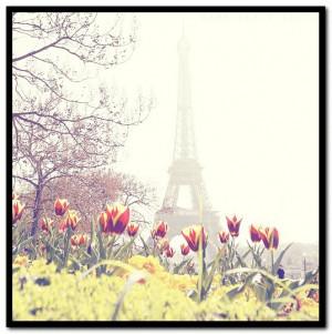 Tumblr Paris Photography