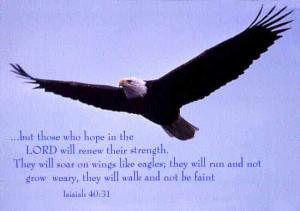 Isaiah40:30-31 (King James Version)