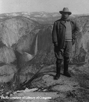 the role of theodore roosevelt in helping toconserveour environment President theodore roosevelt was called the father of conservation for the numerous accomplishments during his administration to protect the environment as the nation's 26th president, roosevelt made conservation a top priority for the nation.