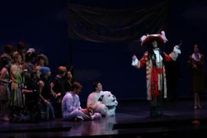 Cathy Rigby Peter Pan Costume
