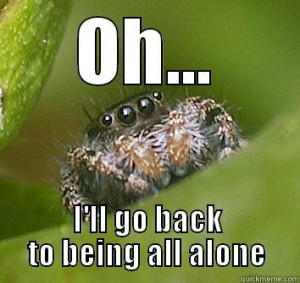 Oh, okay - OH... I'LL GO BACK TO BEING ALL ALONE Misunderstood Spider