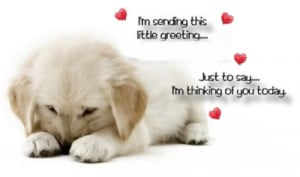 Cute puppy thinking of you