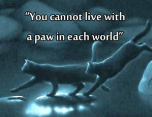 Warrior Cat Quotes Warrior Cats Pinterest