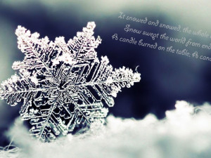 winter quotes wallpaper hd divergent quotes image wallpaper into the