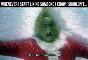funny-pictures-start-feeling-grinch