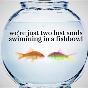 We're just two lost souls swimming in a fishbowl