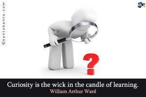 Curiosity is the wick in the candle of learning.