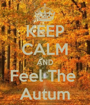 KEEP CALM AND FEEL THE AUTUMN*...(...*so come on now, please get out ...