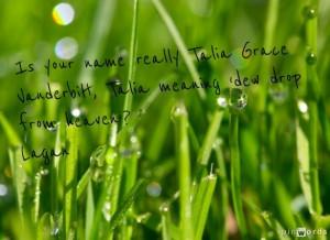 Dew drop - Talia