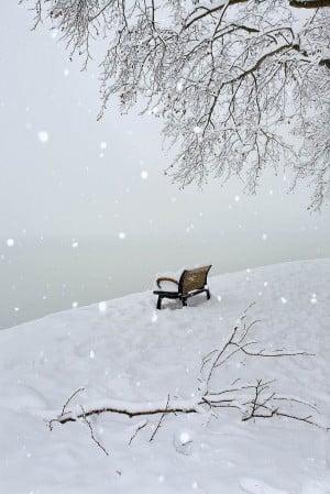 Found on flickr.com