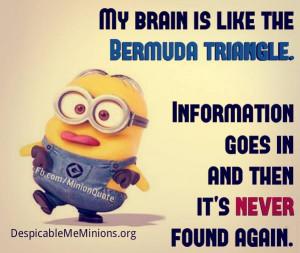 Minion-Quotes-Bermuda-triangle.jpg