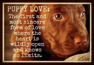 Puppy love nothing better
