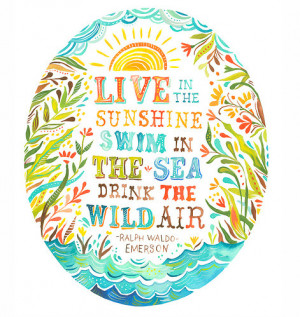 ... , illustration, life, moments, quote, ralph waldo emerson, typography