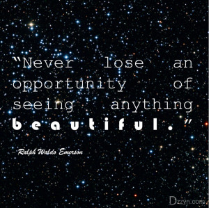 """12- """"Never lose an opportunity of seeing anything beautiful ..."""