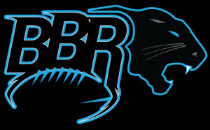 Carolina Panthers News and Coverage for the Digital Age
